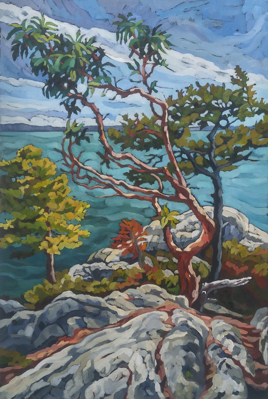 Lone Arbutus by Mary-Jean Butler at The Avenue Gallery, a contemporary fine art gallery in Victoria, BC, Canada.